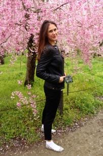 In a Kyoto Botanical Garden