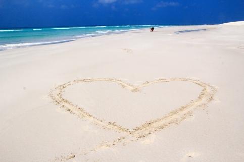 Love(ly) Socotra