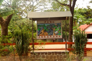 Welcome to Ankarana