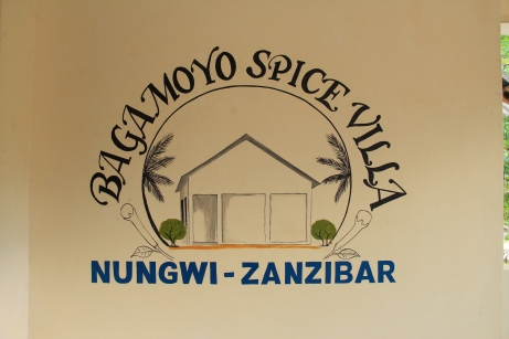 Decent and very cheap accommodation in Nungwi - if you're on a budget, highly recommended!